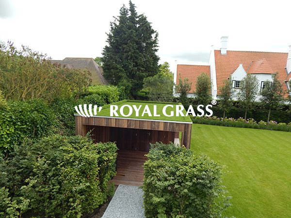 Project: Groendak te Knokke met Royal Grass® Sense