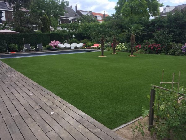 Royal Grass Sense in Roermond