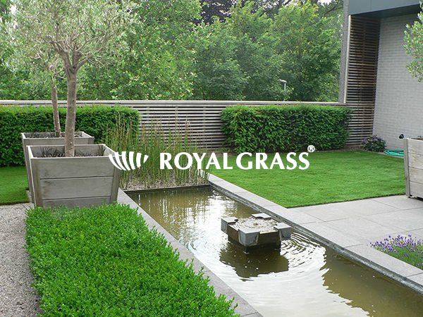 Project: Daktuin met Royal Grass XL te Merelbeke