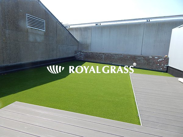 Project: Groendak met Royal Grass te Merkem