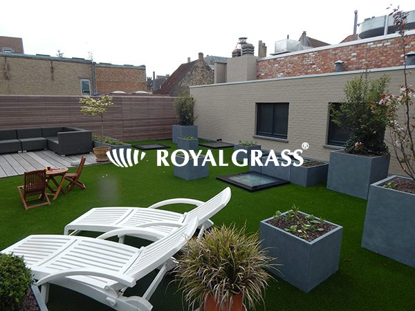 Project: Royal Grass® Deluxe voor groendak te Veurne