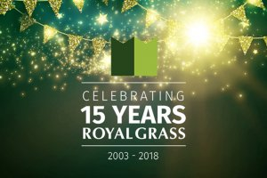 15 jaat Royal Grass kunstgras